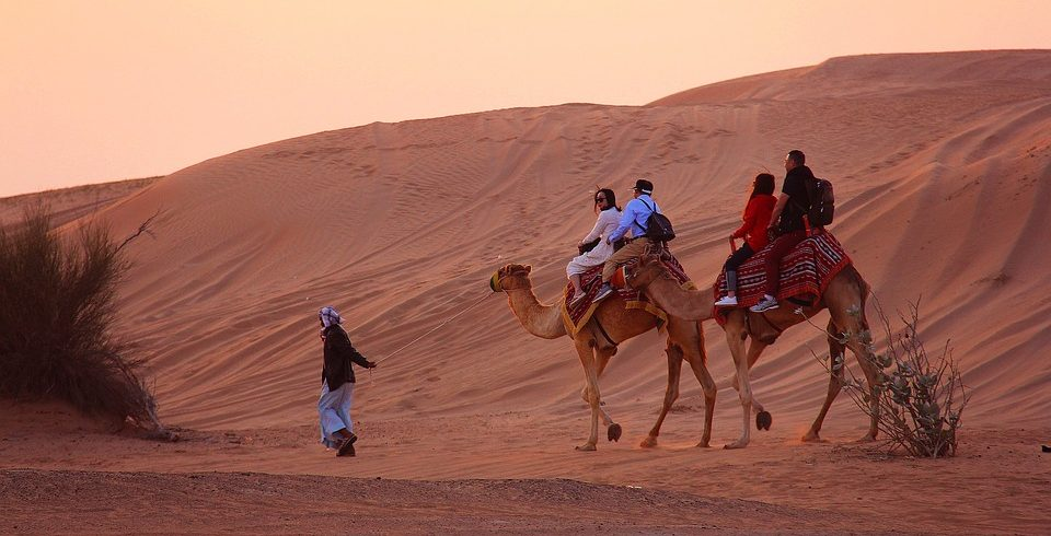 camel-3178798_960_720